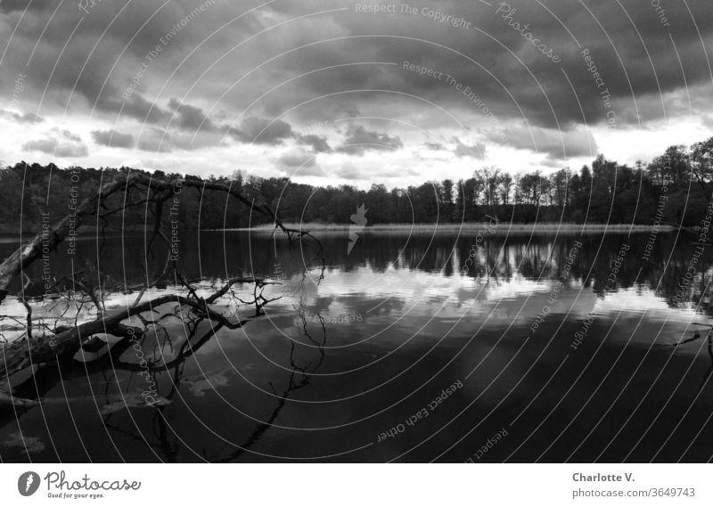 Unheildrohend | Landschaft mit See und dunklen Wolken in Schwarz-Weiß Schwarzweißfoto schlechtes Wetter Seeufer Spiegelung Spiegelung im Wasser