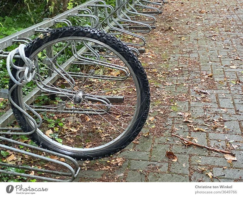 Nur das Vorderrad des Fahrrades steht noch ordentlich angekettet im Fahrradständer. Fahrraddiebstahl festgebunden geklaut gestohlen abmontiert Diebstahl