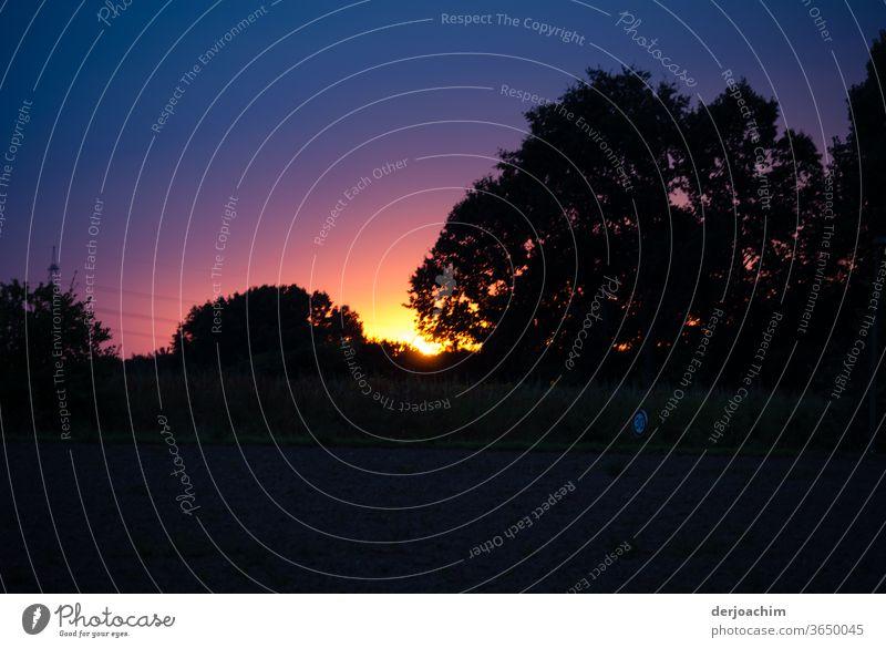 Dämmerstunde. Die Sonne geht hinter einer Baumgruppe, mit schönen Farben unter. Dämmerung Sonnenuntergang Abend Abenddämmerung Farbfoto Außenaufnahme