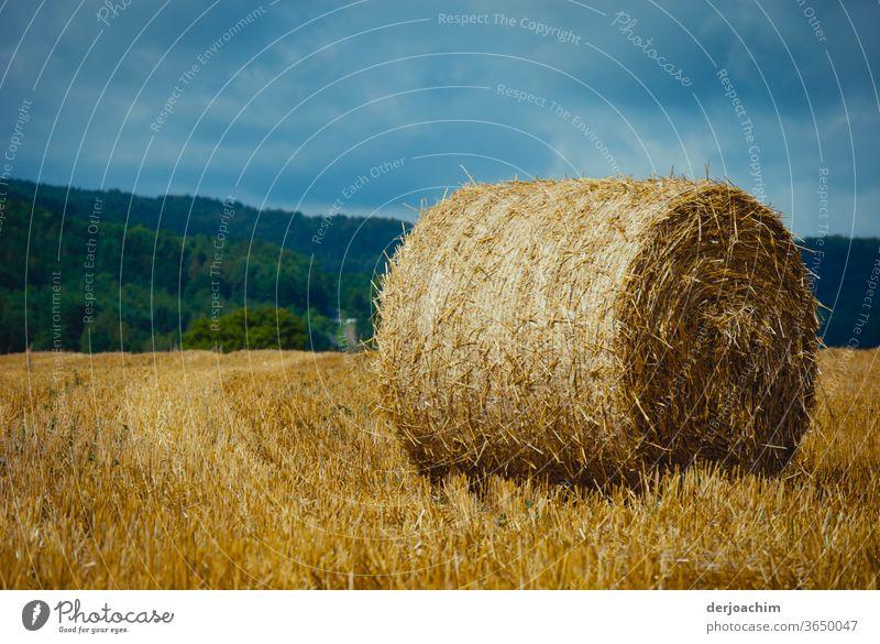 Weizen- Ballen aufgerollt in einem abgeernteten Feld, in einer wunderschönen Fränkischen Landschaft blauer Himmel grüner Wald. Weizenfeld Kornfeld Farbfoto
