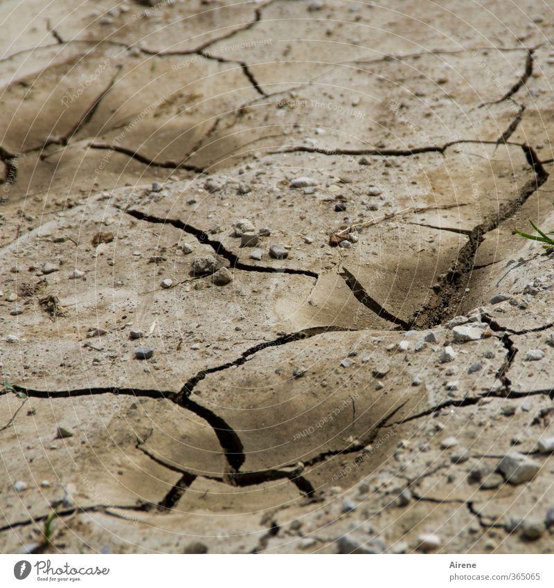 AST6 Inntal   Schluss mit Wasser! Umwelt Natur Landschaft Urelemente Erde Sommer Klima Klimawandel Wetter Dürre Linie trocken braun schwarz chaotisch