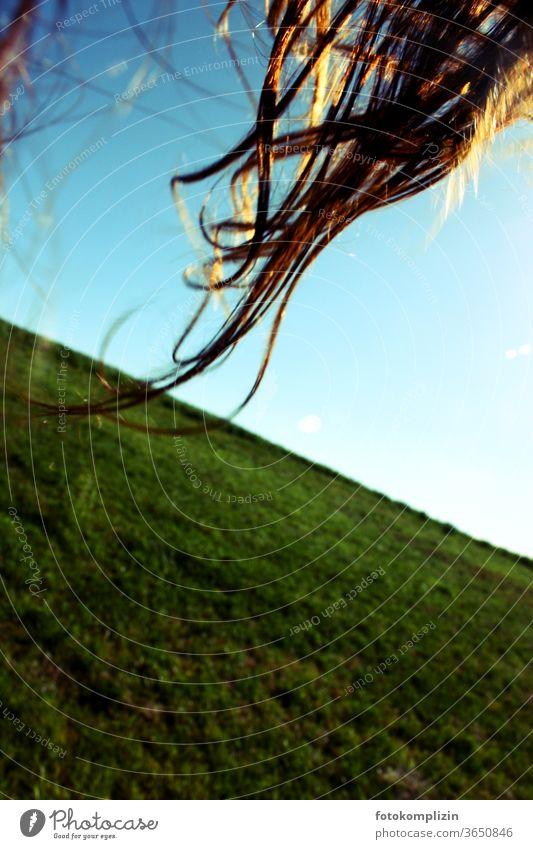 haare im sonnenlicht Haare haare im wind Haare schneiden Haare & Frisuren Lichtspiel Lichteinfall Frau langhaarig feminin Wind Locken Sommer draußensein