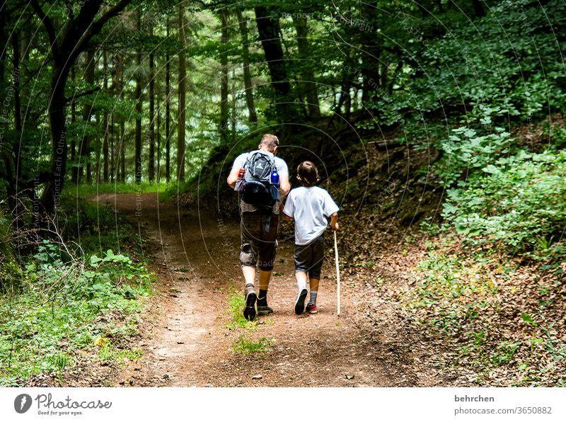 dynamisch | wandern Hand in Hand Wald Ferien & Urlaub & Reisen Liebe Familie & Verwandtschaft Sommer Sohn Vater Mann Kind Junge Eltern Natur Außenaufnahme