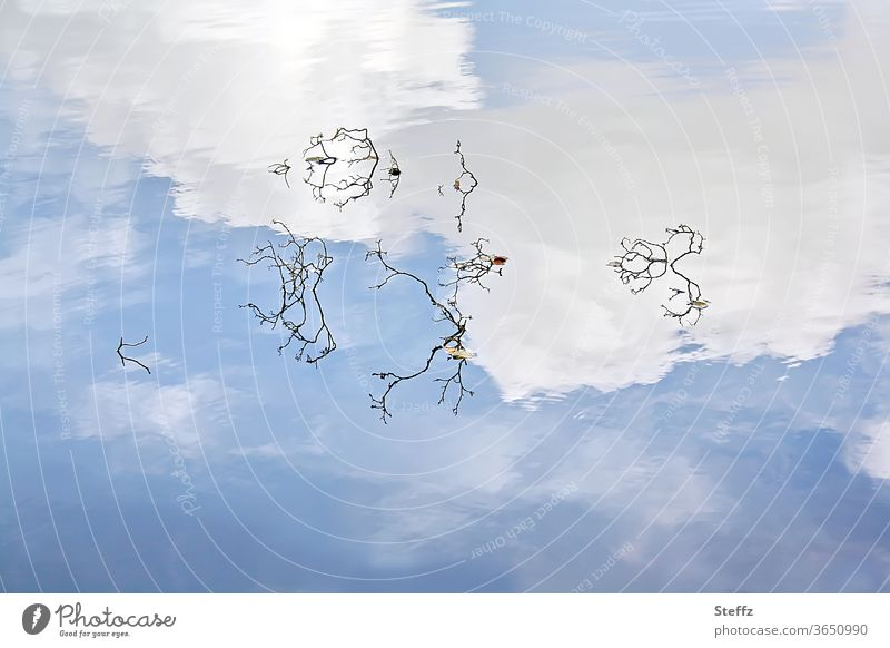 wie oben, so unten Wasserspiegelung Himmel Wolken Stille Wolkenlandschaft blauer Himmel Himmelblau blauer Himmel mit Wolken Spiegelung Spiegelung im Wasser