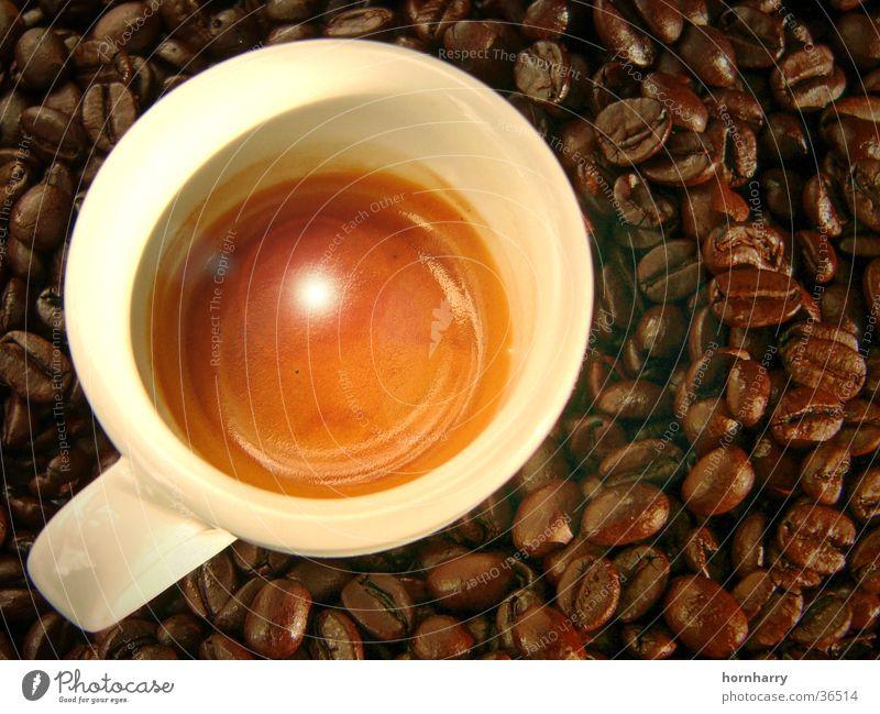 Espresso 1 braun Kaffee Bar Italien Café Tasse genießen Bohnen