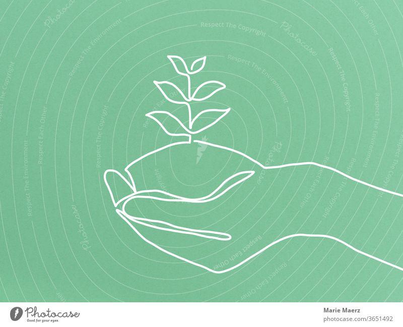 Nachhaltig wachsen - Linienzeichnung einer Hand, in der eine Pflanze wächst nachhaltig Wachstum Natur grün natürlich Umwelt Nahaufnahme positiv Geduld