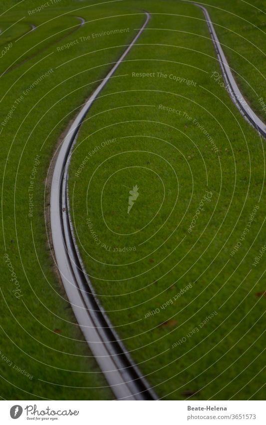 Silbern glänzende Straßenbahngleise eingebettet in weiches grünes Gras Gleiße silberfarben geschwungen Eleganz Verkehrswege Kurve kurvenreich Sommer Wiese
