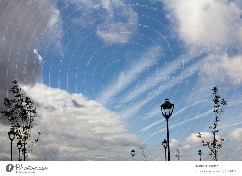 Sommerspaziergang: Straßenlaternen und Bäume vor heiter bewölktem Himmel schönes Wetter bewökter Himmel Sonne Wolken Dynamik erlebnisreich Schönes Wetter Natur