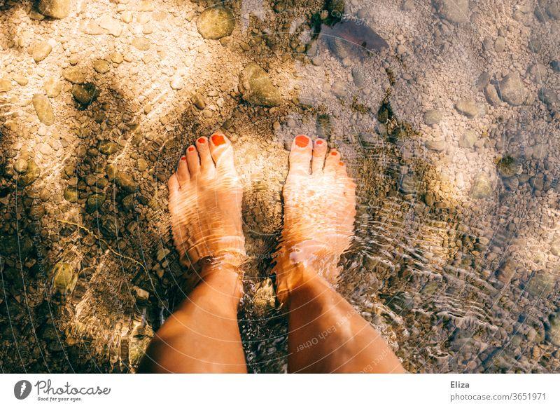 Mit den nackten Füßen im kalten Wasser eines Baches stehen Sonnenschein Erfrischung baden Licht Fluss nass Natur Sommer Schwimmen & Baden Lackierte Zehennägel