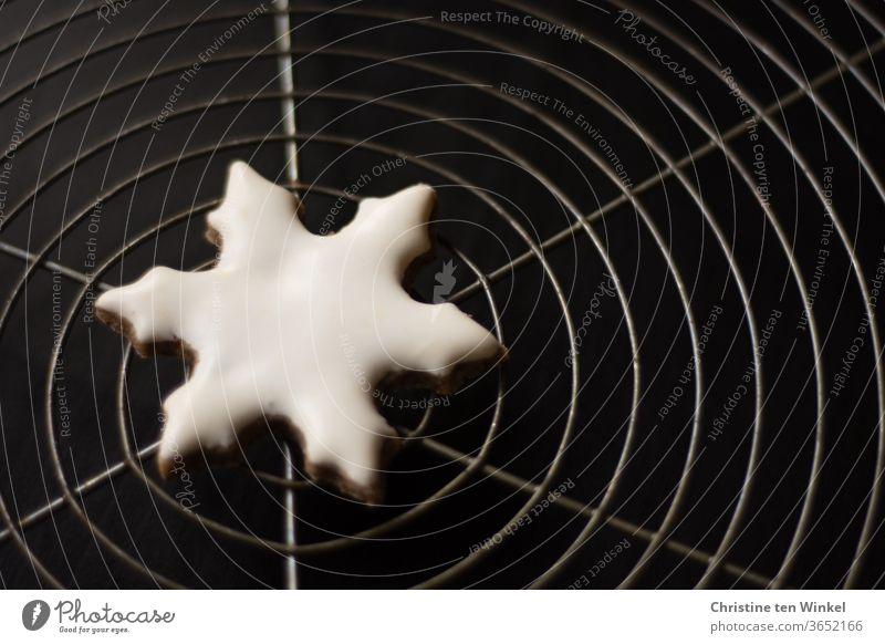 Symmetrie | selbstgebackenes Weihnachtsplätzchen in Form einer weißen Schneeflocke liegt in der Mitte eines Kuchengitters Weihnachtsgebäck Glasur
