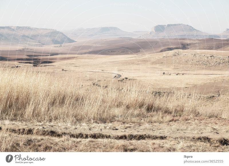 in südafrika land busch und baum Afrika Süden Landschaft gelb grün Berge u. Gebirge Hügel Himmel Park gry Cloud Afrikanisch Natur national malerisch Gras