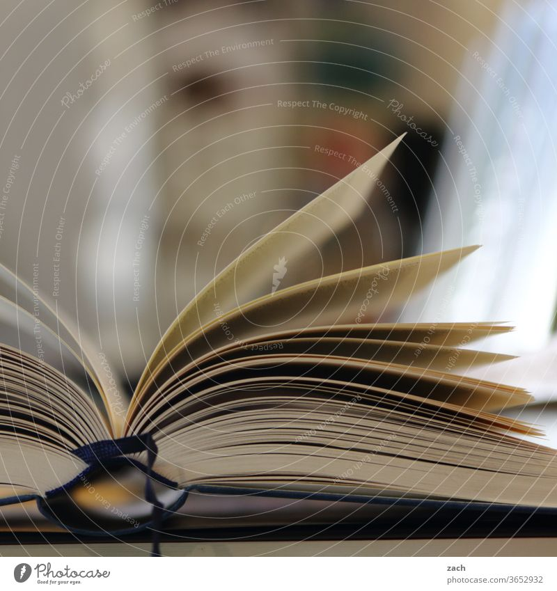 Druckerzeugnis   Blätterfächer Buch Buchladen bücher Bücherstapel Buchhandlung Bücherregal lesen Lesestoff Leseratte Bildung