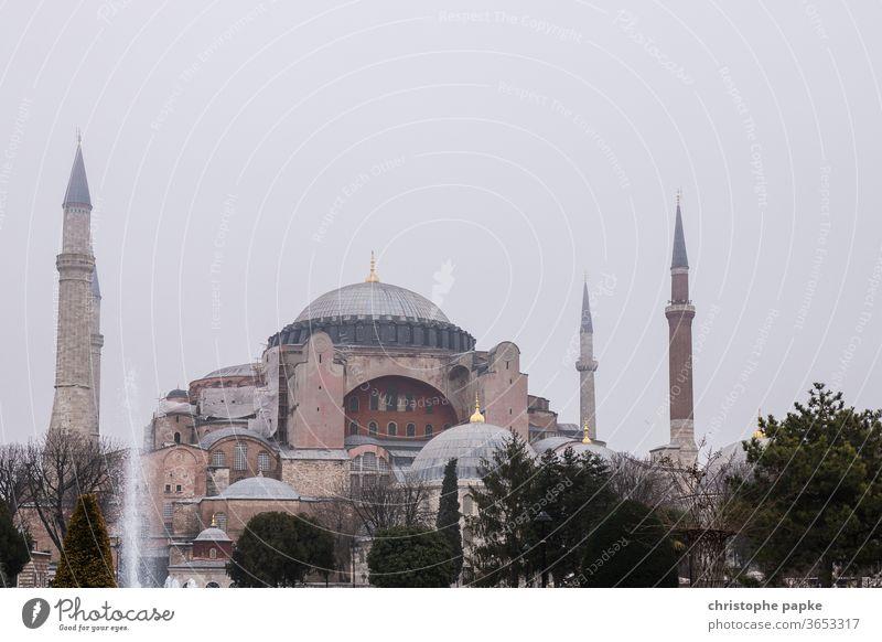 Hagia Sophia in Istanbul Türkei Moschee Architektur Sehenswürdigkeit Minarett Gebäude Kirche Museum Außenaufnahme Farbfoto Bauwerk Wahrzeichen