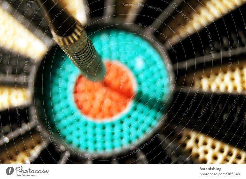 BULL Glück Spielen Darts Sport Erfolg Kunststoff grün rot schwarz Begeisterung Genauigkeit Freude Ziel Zufriedenheit Pfeile Dartpfeil Treffer Mitte Bullauge