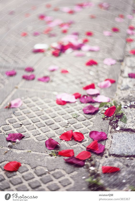 Rosentag. Kunst ästhetisch Rosenblätter Hochzeit Hochzeitstag (Jahrestag) Hochzeitszeremonie Hochzeitsgesellschaft Straße rot rosa viele Unschärfe Farbfoto