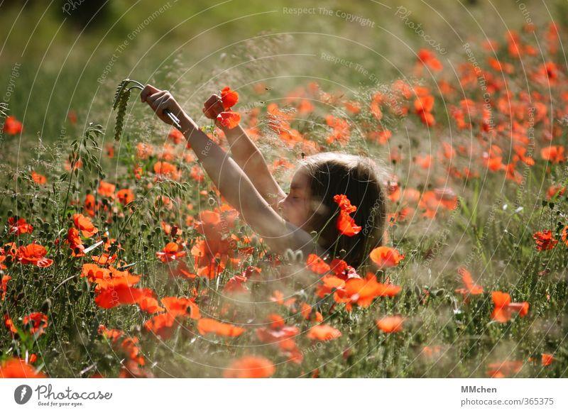 Free your mind Kind Natur grün Sommer Sonne rot Erholung Mädchen Wiese Leben feminin Gras Spielen Garten träumen Park