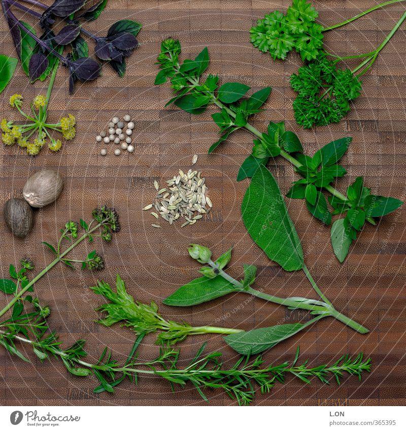 Kräutersalat grün Pflanze Blatt Gras Garten Ernährung Kräuter & Gewürze Duft Bioprodukte Samen Diät Grünpflanze Nutzpflanze Schneidebrett Vegetarische Ernährung