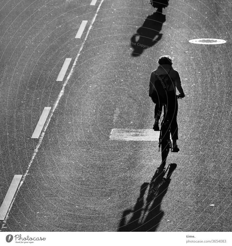 Feierabend fahrrad radfahrerin straße asphalt teer markierung sw schatten silhouette linie radweg gegenlicht rückansicht bewegung unterwegs