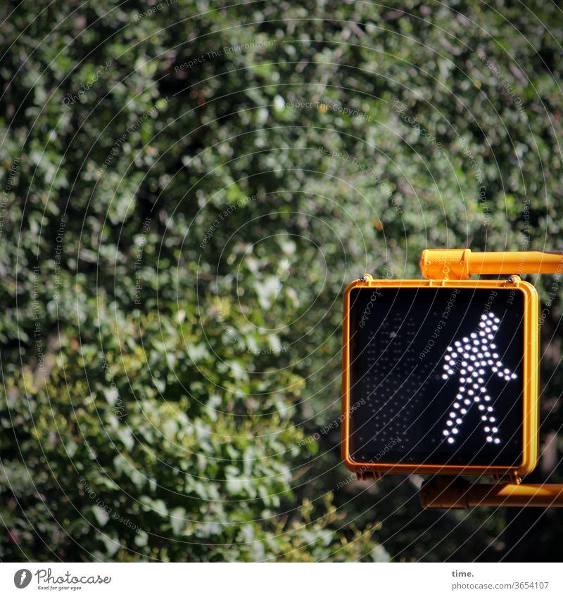 Ampelmännchen (Brooklyn Version) ampel Fußgängerübergang Fußgängerampel urban natur baum busch bewuchs gelb hinweis regel gehen stilisiert gebückt disziplin