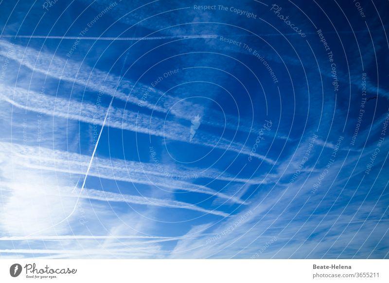 Himmlisch: bewegte Zeichen Himmel Sonne Schleierwolken Außenaufnahme Menschenleer Flugzeug Spuren Message blau-weiß Sonnentag himmlisch fliegen Luft Luftverkehr
