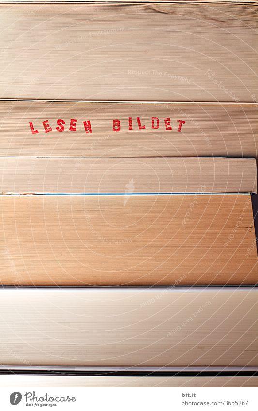 druckerzeugnis l lesen bildet.... Buchstaben bücher Bildung Literatur lernen Bibliothek Bücher Wissen Studium Papier Schule Information Wissenschaften Weisheit