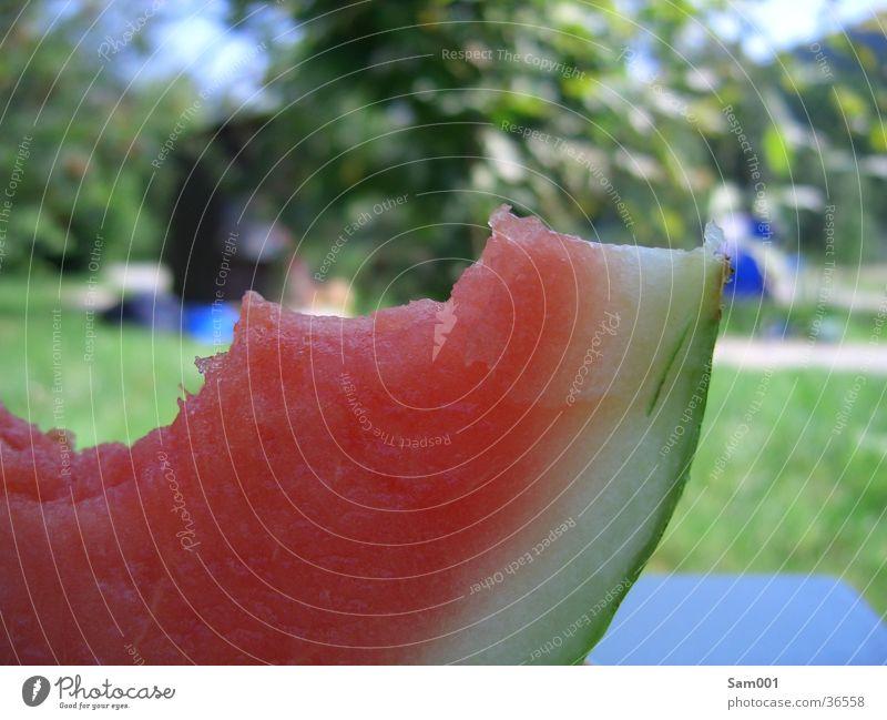Wassermelone rot Sommer Ernährung Gesundheit Frucht süß lecker Erfrischung