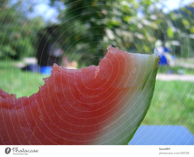 Wassermelone rot Sommer Ernährung Gesundheit Frucht süß lecker Erfrischung Wassermelone