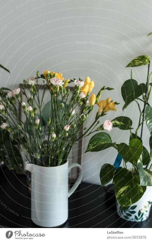 Blumenvase und Blumentopf Hygge licht Zentralperspektive Pflanze Blühend Dekoration & Verzierung Tag schön weiß grün Sommer grau Wildblume Hintergrund neutral