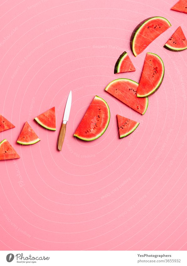 Wassermelonenscheiben liegen flach auf rosa Hintergrund. Frische Sommerfrüchte obere Ansicht angeordnet ausschneiden lecker Dessert Diät flache Verlegung