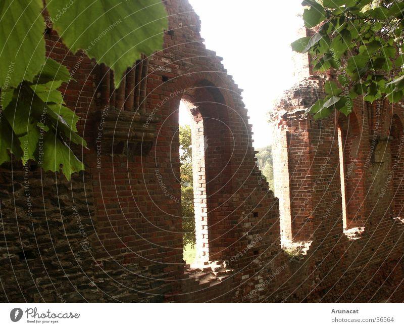 Licht und Schatten Natur Stein Vergangenheit historisch Ruine Erkenntnis Kloster