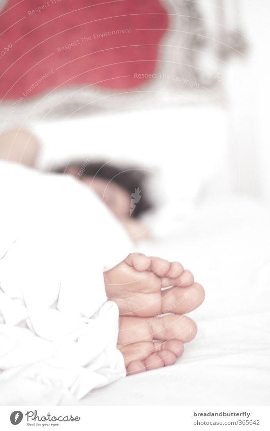 noch 5 Minuten...! Bett Schlafzimmer Mensch maskulin Junger Mann Jugendliche Fuß 1 18-30 Jahre Erwachsene Bettdecke schlafen kuschlig weiß Innenaufnahme Morgen