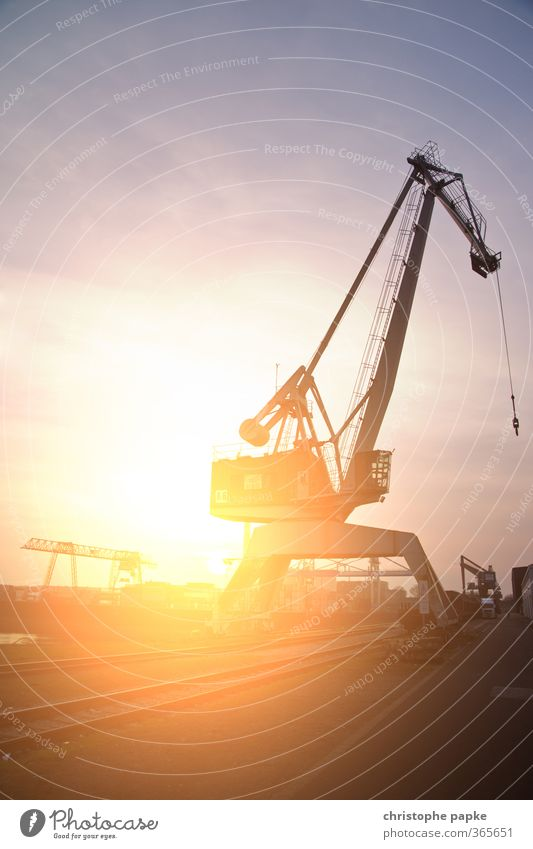 Lightdock Arbeit & Erwerbstätigkeit Kran Hafen Hafenarbeiter Baustelle Wirtschaft Industrie Güterverkehr & Logistik Maschine Sonne Sonnenaufgang Sonnenuntergang