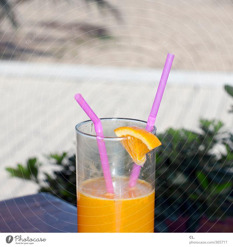 ab in den urlaub Ferien & Urlaub & Reisen Sommer Sonne Erholung Freude Strand Gesundheit Paar Zusammensein Freizeit & Hobby Lifestyle Orange Glas Tourismus