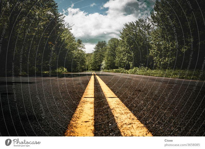 Gelbe Fahrbahnmarkierung, Streifen auf Asphalt Mittelstreifen Straße Zentralperspektive gelb Wege & Pfade Tag Linie Verkehr Schilder & Markierungen grau