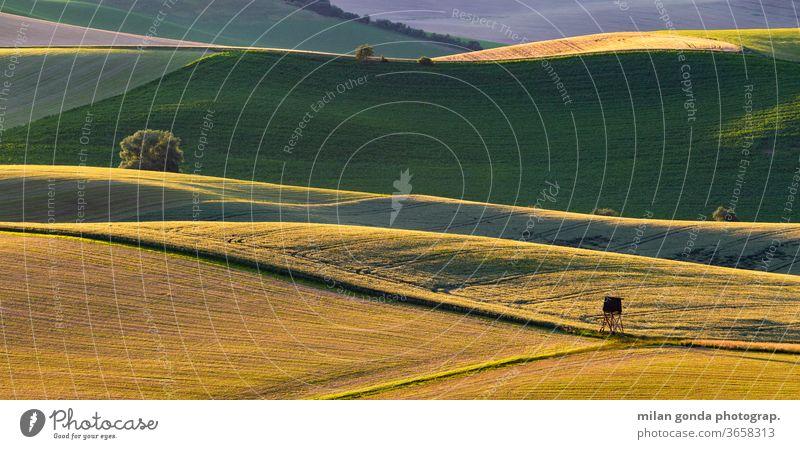Ländliche Landschaft der Region Turiec in der Nordslowakei. Slowakische Republik ländlich Bereiche Sommer Ackerbau Natur Hügellandschaft Jagdausguck