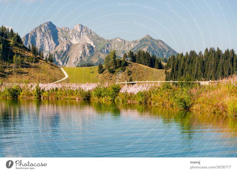 Neue Woche, neues Wanderglück! Gebirgssee Wasser Freiheit Alpen Berge u. Gebirge Pfad Bäume wandern Landschaft Ferien & Urlaub & Reisen Seeufer Gipfel Natur