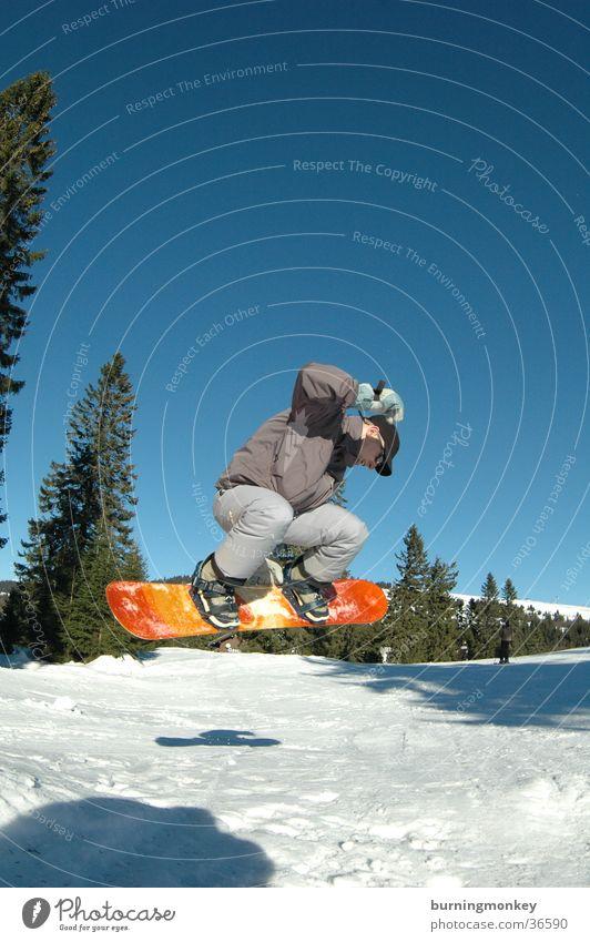 Board 4 Sonne Berge u. Gebirge Schnee Sport springen orange hoch Blauer Himmel Snowboard Wintersport Nadelbaum Winterurlaub Snowboarding angewinkelt Snowboarder Air