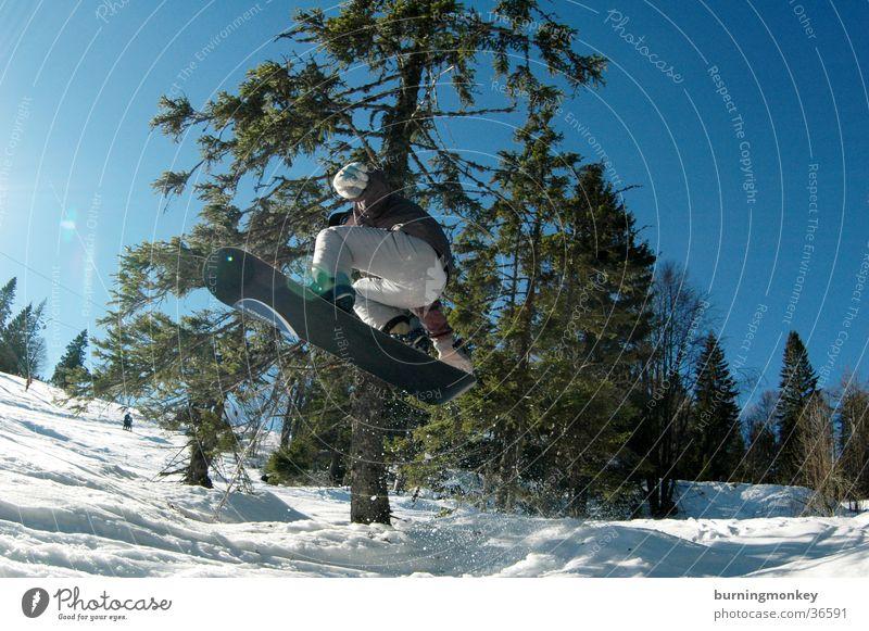 Board 3 Sonne Berge u. Gebirge Schnee Sport springen hoch Geschwindigkeit Körperhaltung Blauer Himmel Snowboard Wintersport Nadelbaum Winterurlaub talentiert Snowboarding Winterstimmung