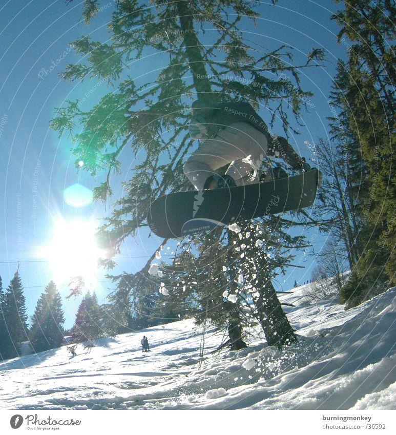 Board 2 Sonne Berge u. Gebirge Schnee Stil Sport springen Aktion hoch Körperhaltung Snowboard Wintersport Nadelbaum Winterurlaub Freestyle talentiert Funsport