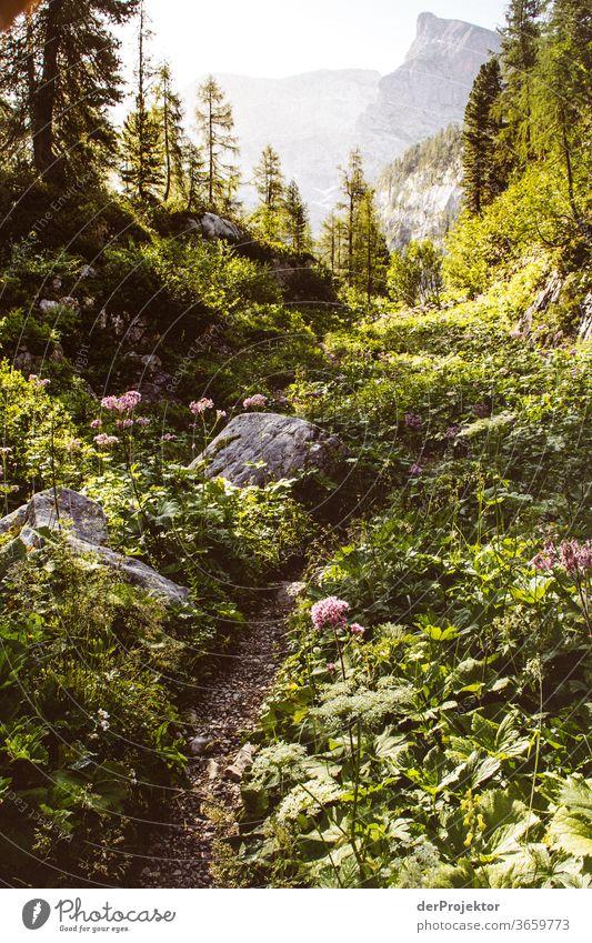 Wanderweg im Nationalpark Berchtesgarden Weitwinkel Panorama (Aussicht) Totale Zentralperspektive Starke Tiefenschärfe Sonnenaufgang Sonnenlicht