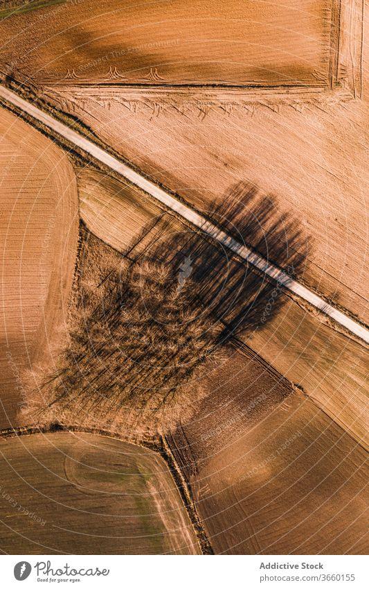 Fahrbahn zwischen braunen landwirtschaftlichen Feldern Straße Ackerbau ländlich Landschaft Natur Umwelt Weg Route Ackerland Autobahn Gelände gerade Gegend