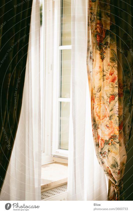 Geöffnetes Fenster mit Gardinen und geblümten Vorhängen geöffnet Blumenmuster offen lüften Sonnsnschein Sonne Licht durchlüften Wohnung Vorhang Fensterbrett