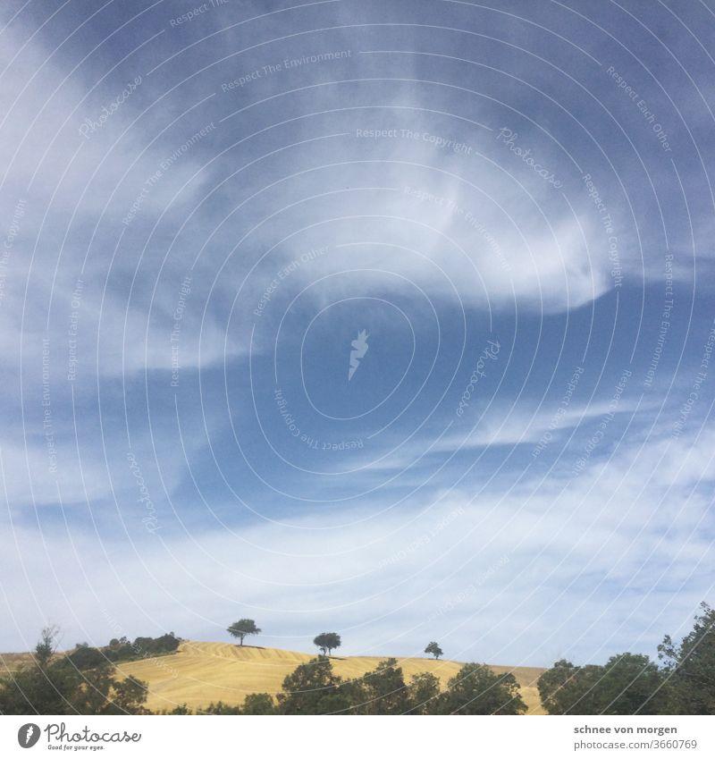 leichte wolken über der toskana italien landschaft hügel himmel urlaub ferien bäume weite blick felder umwelt flora fauna