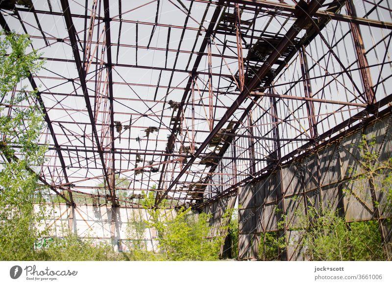 rostiger verfallener Hangar, wird immer grüner lost places Birke Zerstörung Renaturierung Kontrast Streben Strukturen & Formen Endzeitstimmung Sonnenlicht