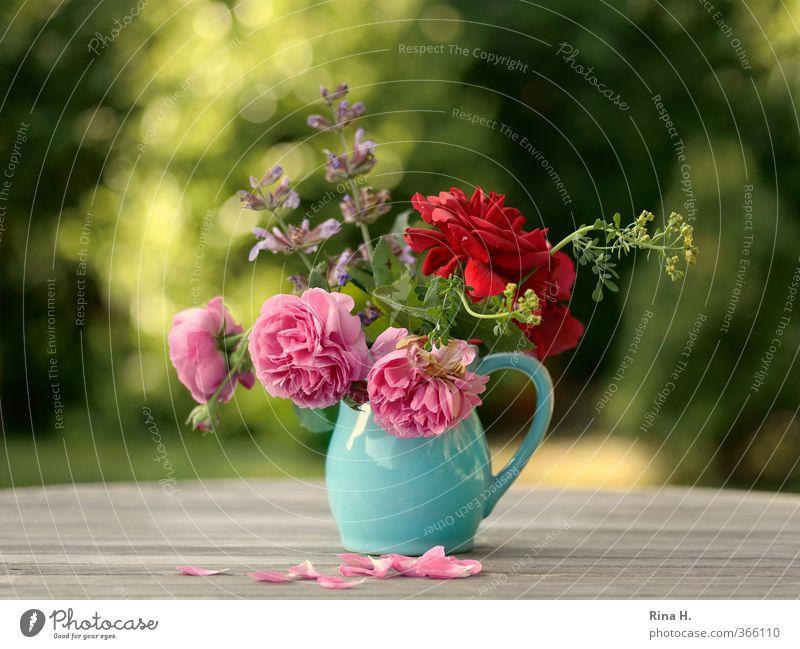 GartenBlumenStrauß grün Sommer rot natürlich Stimmung rosa Schönes Wetter Blühend Lebensfreude Blumenstrauß türkis Vase verblüht Holztisch Rosenblätter