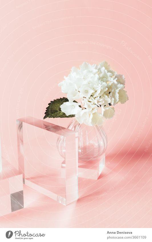Acryl-Festkörper-Anzeigeblöcke Blöcke solide Schaufenster leeres Podium Sockel-Anzeige geometrische Form Regal Produkt-Mockup