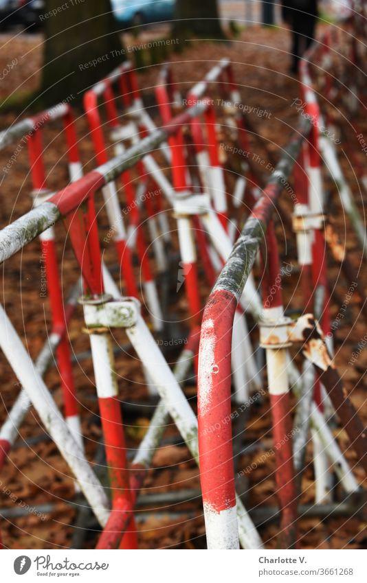 UT HH 2019 | Absperrschranken warten auf den nächsten Einsatz Absperrgitter Absperrungen Herbslaub Bäume Rost Schmutz schmutzig rotweiß rot-weiß Außenaufnahme