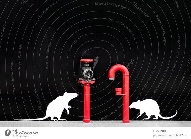 zwei kleine, niedliche Ratten wollen das Leitungsrohr und den Hydranten erklimmen - aber es sind nur aufgeklebte Attrappen Nagetiere weiß rot Rohr Rohrleitung