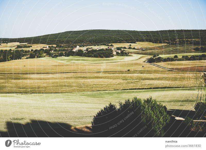 Landschaft auf dem Land in Spanien Bereiche Feldfrüchte Zerealien Ackerbau Wald Landleben Landseite leeres Spanien keine Menschen niemand ländlich rustikal