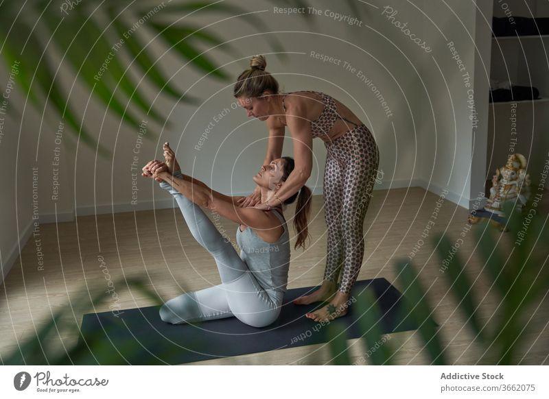 Fokussierte Frauen, die Krauncasana-Yoga-Pose dehnen üben Atelier Dehnung beweglich Windstille Reiher Wohlbefinden Gleichgewicht Wellness Ausbilderin passen